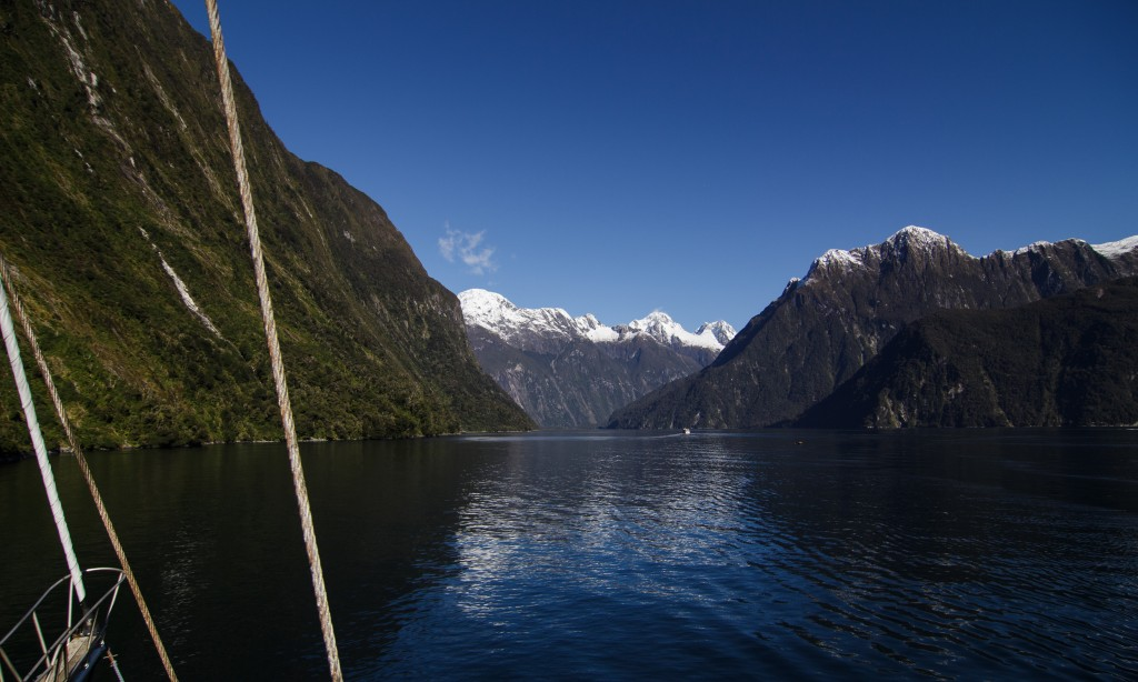Milford Sound view in