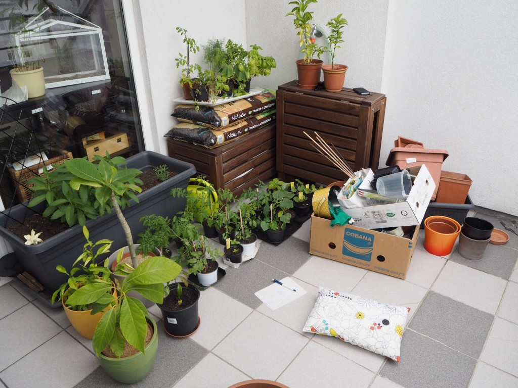 This is how I started out - with lots and lots of containers and an equal lot of confusion