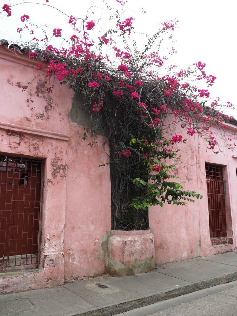 Colombia Cartegena de Indias Getsemaní