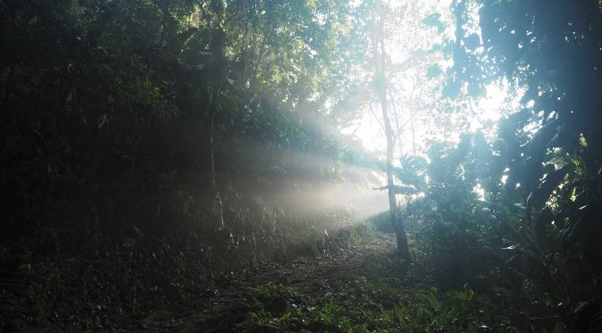 Ciudad Perdida trek Colombia Santa Marta Magdalena